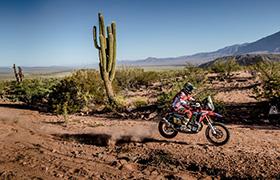 Joan Barreda wygrywa etap i prowadzi w Dakarze